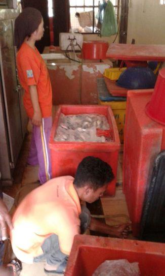 Bekalan ikan-ikan lampam yang dihantar kepada pengusaha industri pekasam