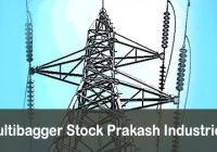 Earn Awesome Return On Multibagger Stock Prakash Industries