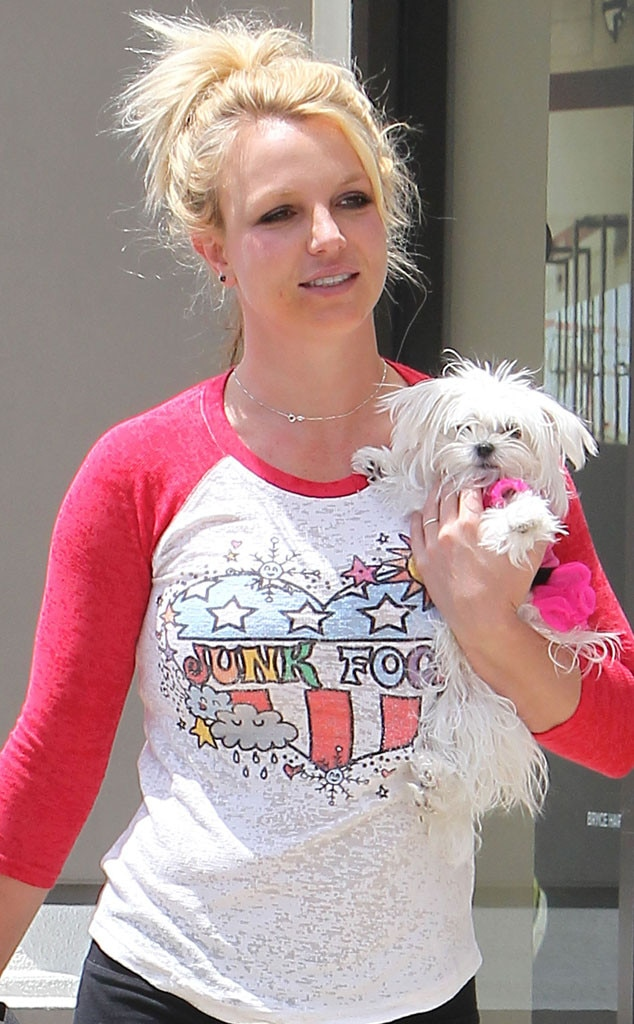 We Love That Britney Spears Loves Target And Spent 25000