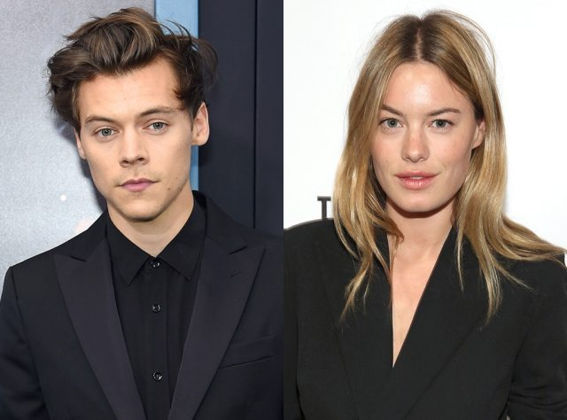 Image result for harry styles camille rowe
