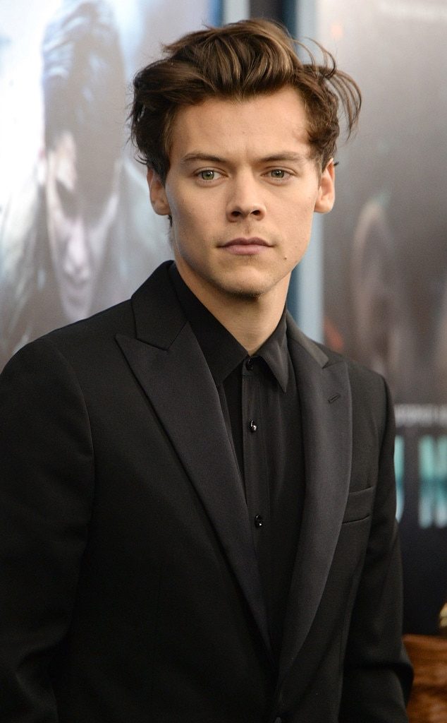 Gasp Harry Styles Says He Would Not Consider Himself Sexy