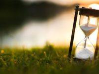 Odlike sabura: Smirenost u nevoljama