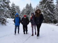 Hrabri đaci iz sela Bare na Pešterskoj visoravni: Do škole pješke kroz šumu FOTO