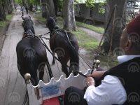 Mahmutovići 120 godina čuvaju tradiciju: Fijaker je nekada bio ono što je danas Rolls-Royce