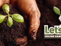 Volonteri širom BiH zasadili desetine hiljada sadnica
