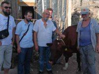Udruženje Izvor pomoći – utjeha za ugrožene u Hercegovini