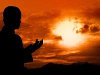Dova koja otklanja brige i liječi tugu