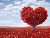 Naše najveće prepreke su bolesti srca