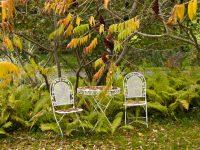 Oktobar je – vrijeme za važne radove u bašti