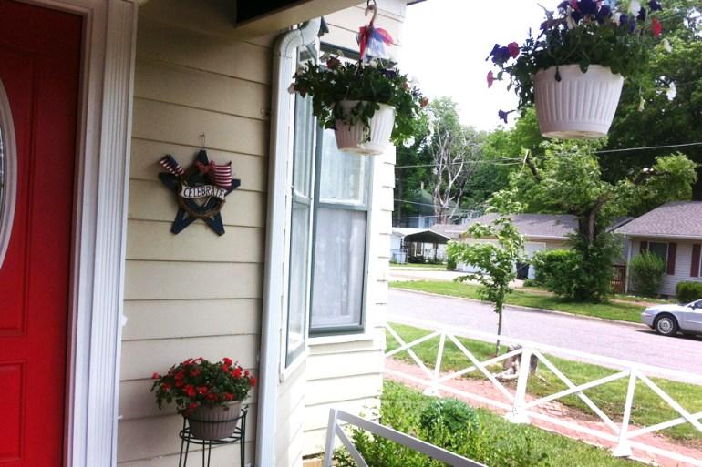 Hanging Patirotic Petunias