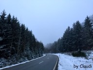 Straße im Soonwald
