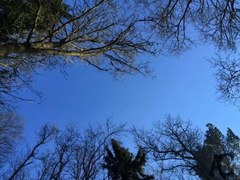 Geocachen im Frühling