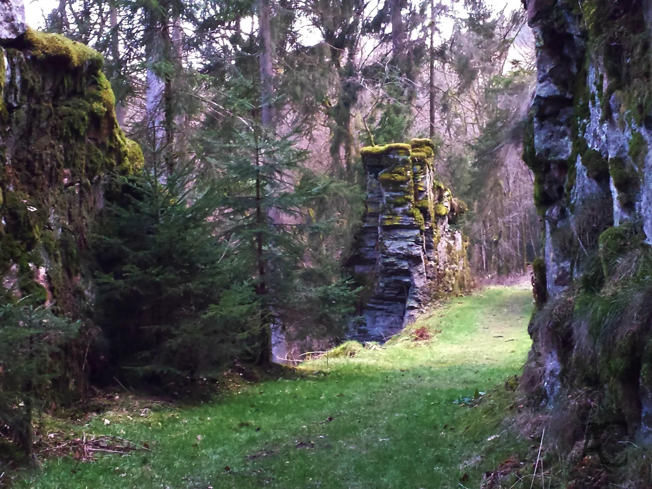 Das Steintor
