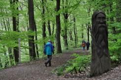 Und nicht zu vergessen: der tolle Wald ringsrum.