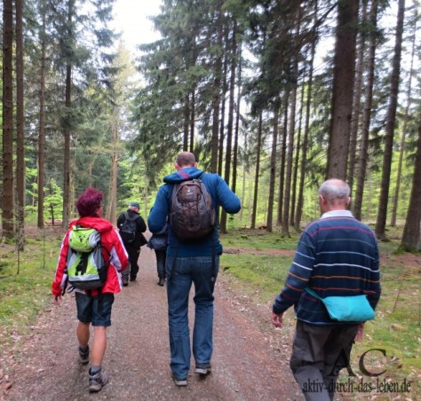 In einer kleinen Gruppe lässt es sich vorzüglich wandern und Wissenswertes erfahren.