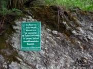 Mittelrhein-Klettersteig
