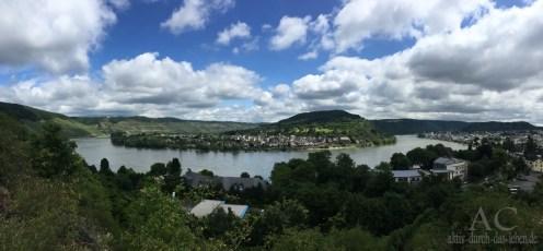 Und immer dieser wunderbare Blick auf den Rhein