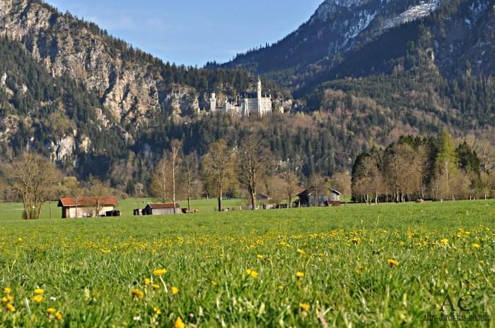 Schloss Neuschwanstein bei Schwangau in Bayern