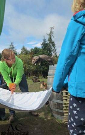 Sprung ins Betttuch - die Kinder waren sehr froh bei dieser Übung, denn sie fingen das Frettchen auf.