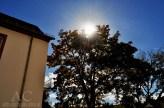 Die Sonne begleitete uns den ganzen Tag. Das lud zum Fotografieren ein.