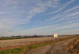 Der Weg zur Geierlay.