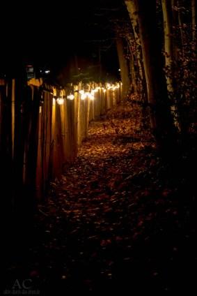 Romantische Wald-Weihnacht