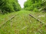 Trasse der Hunsrückbahn