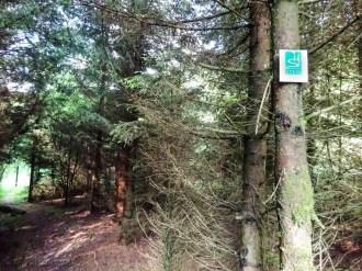 Markierung der Wanderroute