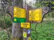 Wandermarathon Donnersberg 11