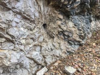 Die Felsen sind imposant
