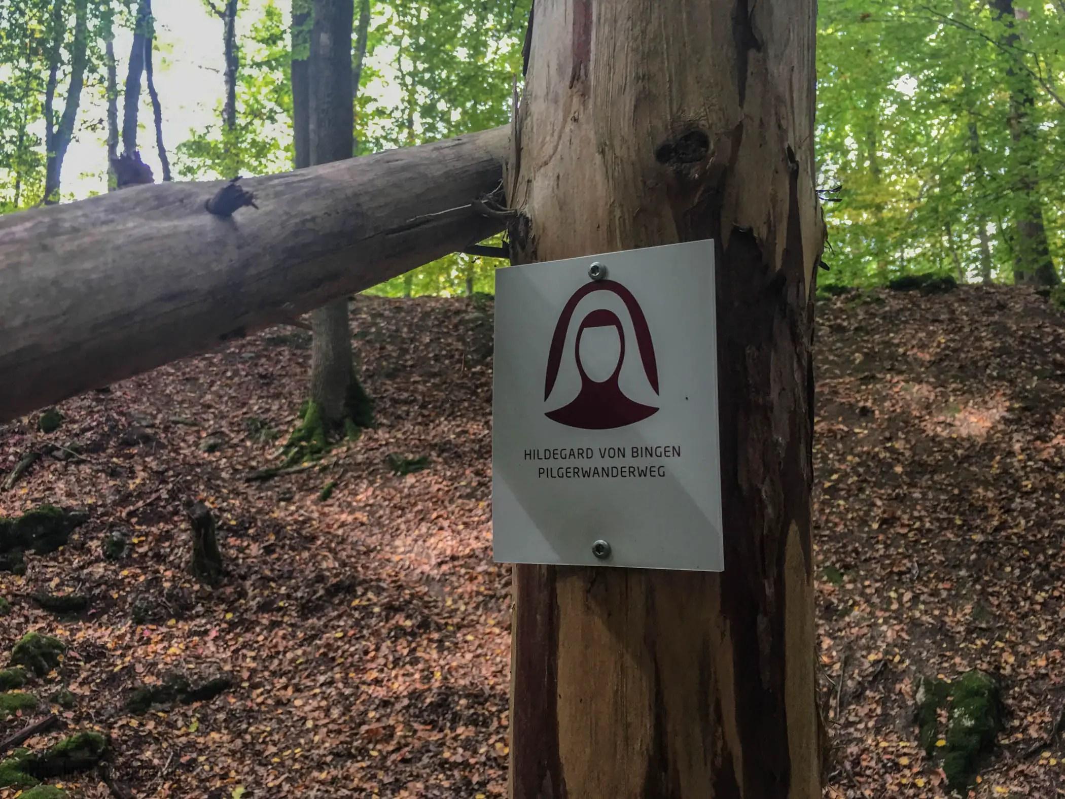 Auch der Hildegard-von-Bingen Pilgerwanderweg geht durch die Steckeschlääferklamm