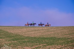Reiter nutzen die Strecke nahe Hergenfeld auch gern