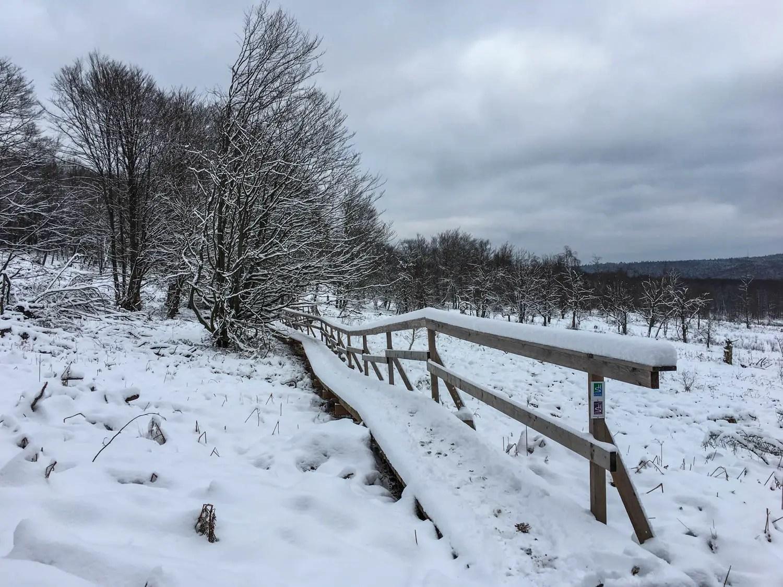 Winterwunderland Hunsrück – Die Traumschleife Börfinker Ochsentour