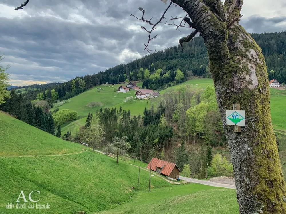 Schwarzwälder Wandersinfonie, Akt 2: Der Wiesensteig
