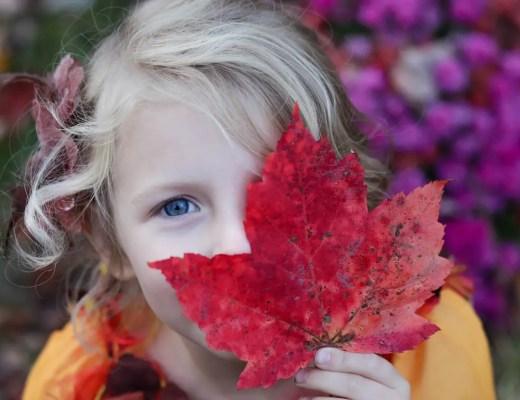 Prävention im Kindergarten   Ernährungsberatung für Kinder