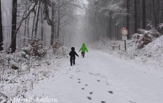 Winterspaziergang auf dem Rösterkopf