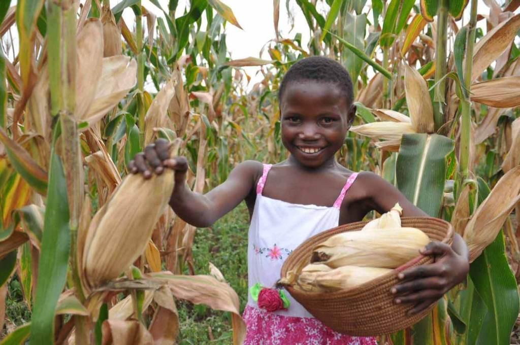 World Vision bietet Schulungen zu landwirtschaftlichen Anbaumethoden an