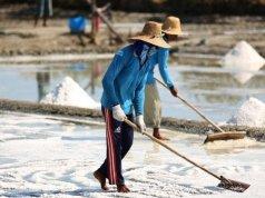 Ilustrasi - aktivitas petani di tambak garam. ANTARA/HO KKP