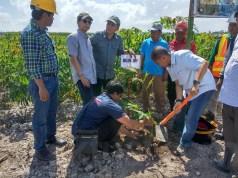 Penipuan Berkedok Investasi Singkong dan Aren di Riau oleh PT STM