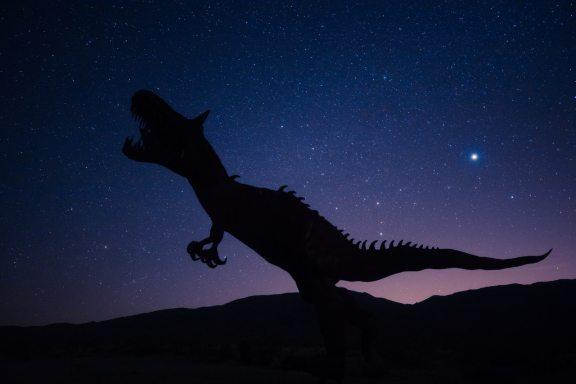 Jak vypadalo mládě tyranosaura?