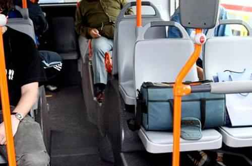 autobuz pungi