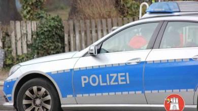 Photo of Nach Bandendiebstahl mit hoher Beute durchsucht Polizei 14 Objekte