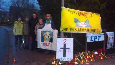 Photo of Hamburger Behörde bittet Staatsanwaltschaft um Aufnahme von Ermittlungen gegen Tierversuchslabor