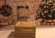 Photo of Fotoshooting: Kleine Sternchen kommen zu Weihnachten groß raus