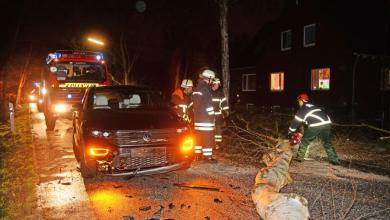 Photo of Keine Verletzten bei Zusammenstoß mit Baum