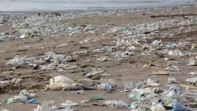 Photo of Plastikmüll: Niedersachsen bringt Bundesratsinitiative auf den Weg