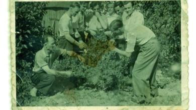 Photo of Großvaters Erinnerungen an Zwangsarbeit und KZ-Haft