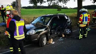 Bild von Feuerwehr Seevetal befreit verletzte Frau nach Verkehrsunfall aus PKW