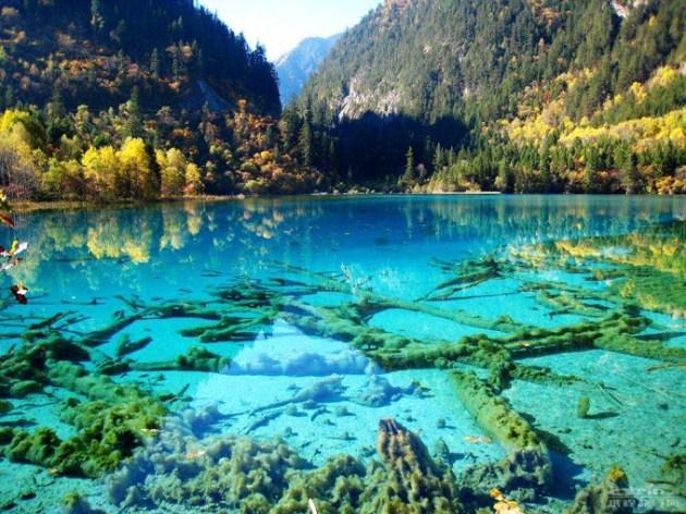 Crystalline-Turquoise-Golu-Jiuzhaigou-Doga-Parki-Cin