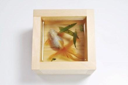 goldfish-3-600x398